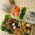 本日のお弁当(2012.1.20)