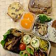 本日のお弁当(2012.11.5)