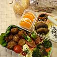 本日のお弁当(2012.11.19)