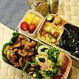 本日のお弁当(2013.4.19)