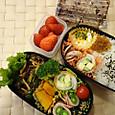 本日のお弁当(2013.5.20)