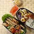 本日のお弁当(2013.11.11)