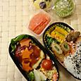 本日のお弁当(2013.11.15)