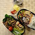 本日のお弁当(2013.11.25)