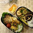 本日のお弁当(2013.11.26)